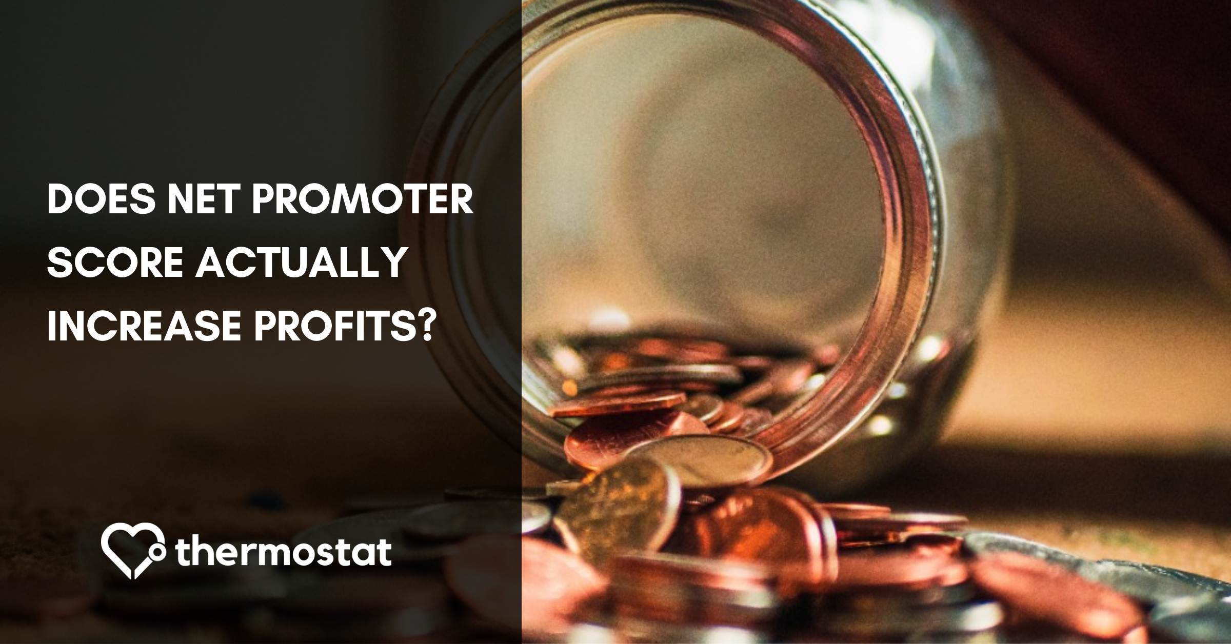 How is NPS Linked to Revenue? A Deeper Look at Net Promoter Score & Profits cover photo